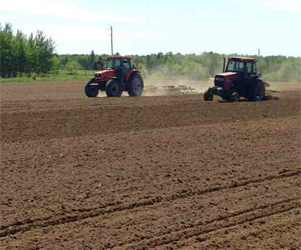 Field preparation during spring planting