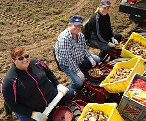 Jolene Spurgeon, Jim Meyer and Dianne Kessler planting potatoes in the spring.